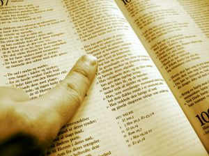 162033_studying_the_scripture.jpg